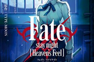 Fate/stay night Heaven's Feel(8巻)