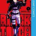 半人半妖のバトル漫画「BLACK TORCH(ブラックトーチ)」1巻のあらすじ・ネタバレ感想